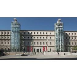 Visit the Reina Sofia Museum